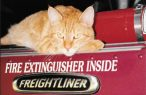 cropped-cropped-cropped-cats713.jpg
