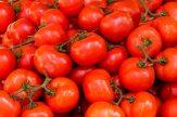 abundance-agriculture-fresh-533280