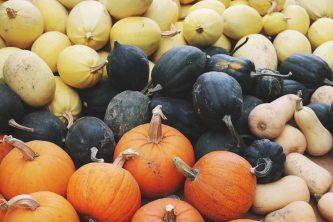 abundance-agriculture-close-up-1527010