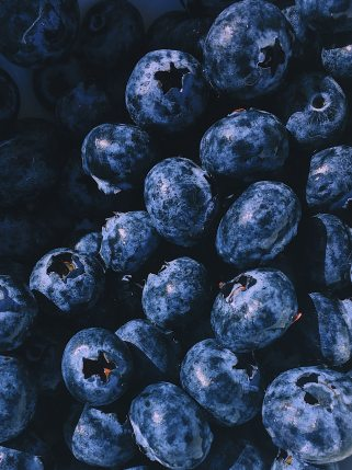 berries-bilberry-blueberries-1395958